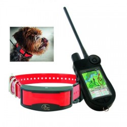 SPORT DOG TEK 2.0 EQUIPO GPS