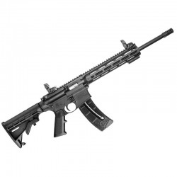 Carabina semiautomática Smith & Wesson M&P15-22 Sport