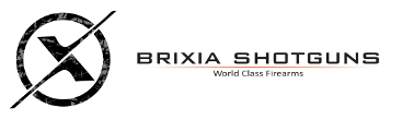 Logo Brixia